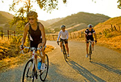 Backroads Santa Barbara and Ojai Biking